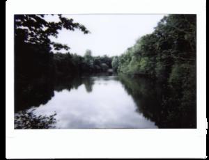 Ein Seei m Wald