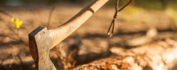 Survival Training, Yoga und Equipment-Tests
