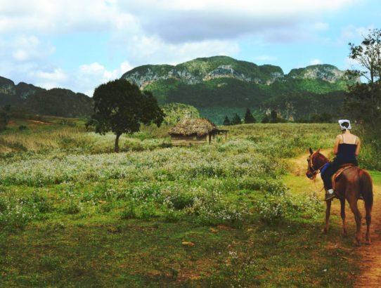 Ferien auf dem Pferderücken