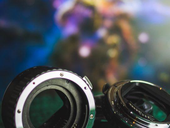 Mit Makroringen fotografieren - Tipps und Tricks