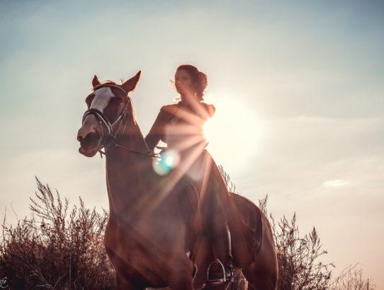 Natürliches Licht verstehen - Fotografie Wissen